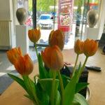 Salon-Dresden-Ringstrasse-Blumen-im-Eingangsbereich